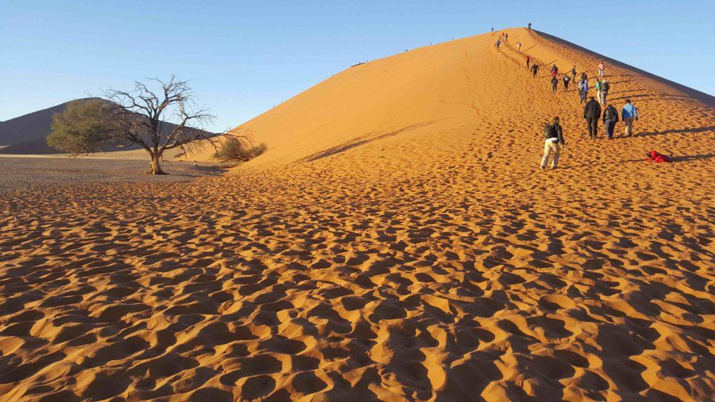Deserto del Namib, Sossusvlei, Duna 45, Namibia