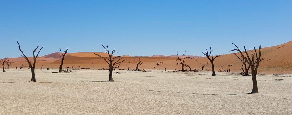 Deserto del Namib, Sossusvlei, Namibia